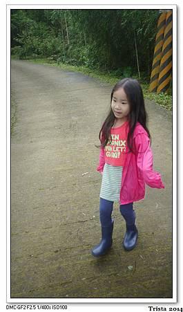 P1190514.jpg