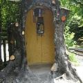 樹幹電話亭