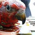 0912紅伶