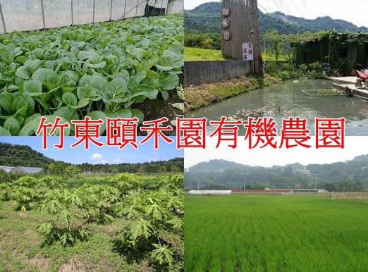 竹東頤禾園有機農園.jpg