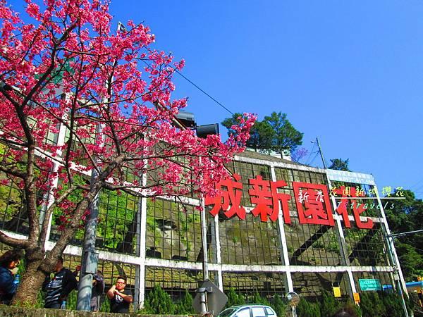 花園新城 (1).JPG