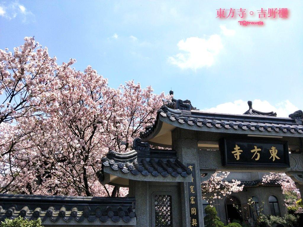 東方寺 (1).jpg