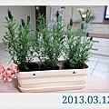 2013-03-25 17.33.10_000.jpg
