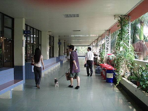 高中部走廊2.jpg