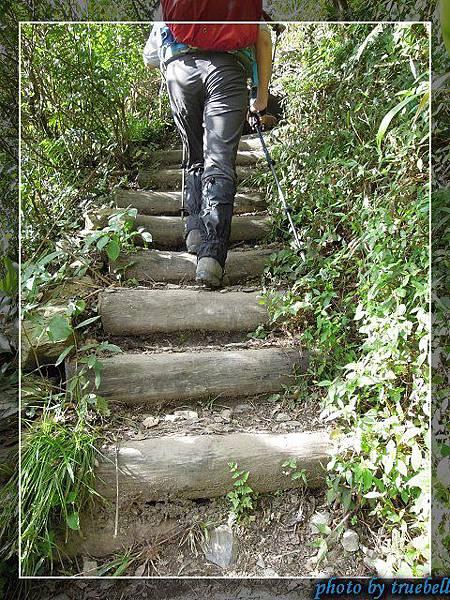 一開始是階梯