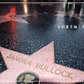 Hollywood 5