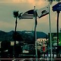 Hollywood 8