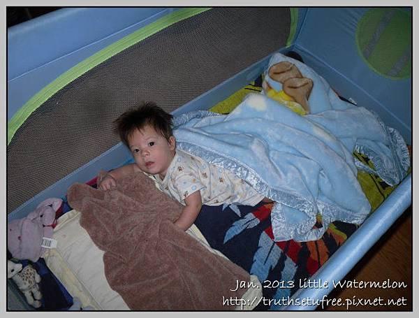 New bed - 4m2w5d(2)
