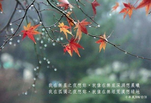 冬雨 十年風