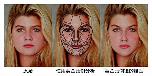黃金比例臉型.jpg