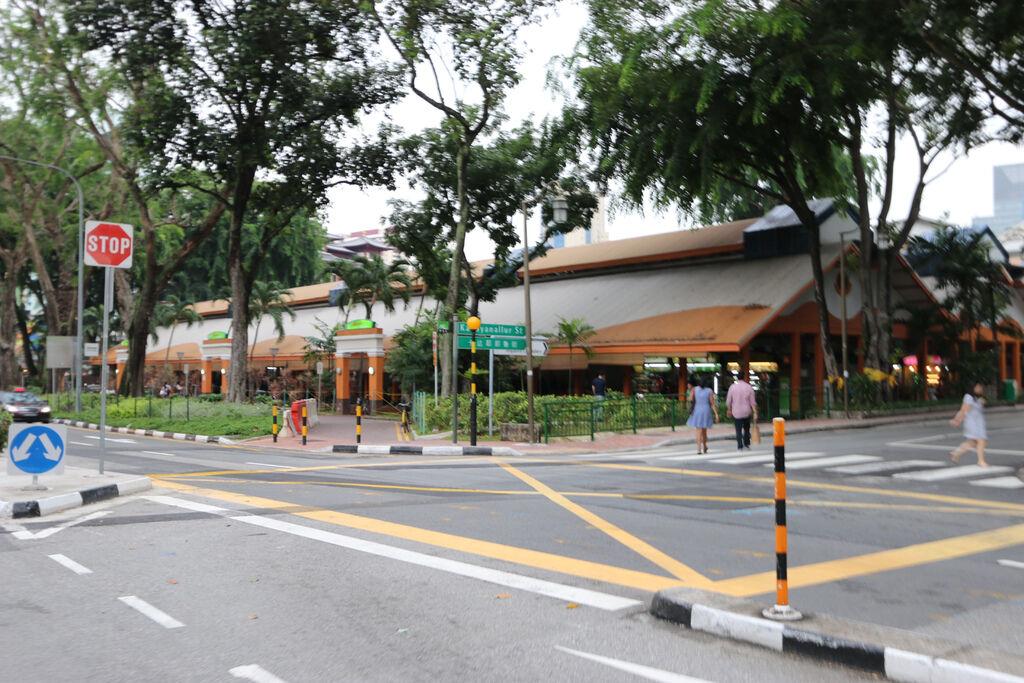 新加坡必去牛車水佛牙寺麥士威海南雞飯15.jpg