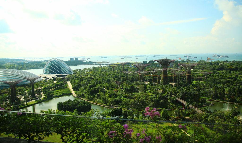 新加坡金沙酒店泳池房間飯店marina bay sands16.jpg