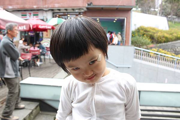 nEO_IMG_IMG_2009.jpg