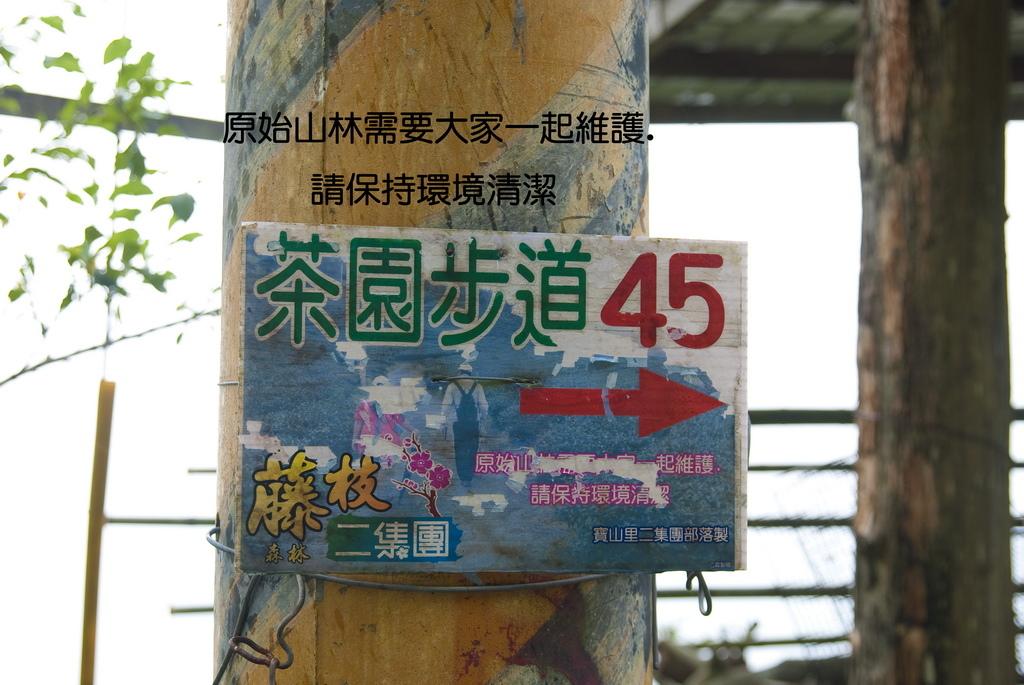DSC_9239-.jpg