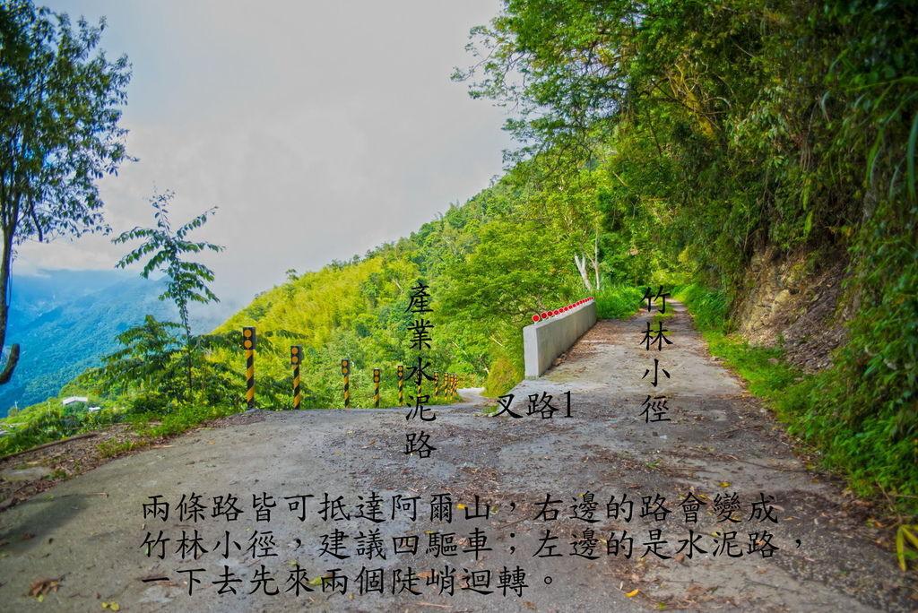 DSC_1740-.jpg