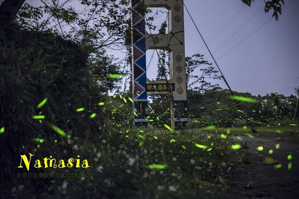 DSC_4080-L.jpg
