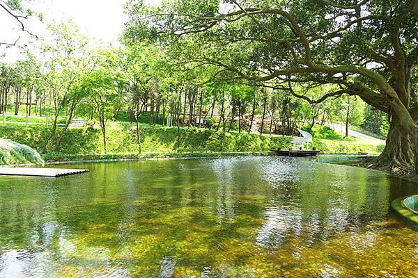 50.夢幻湖泊
