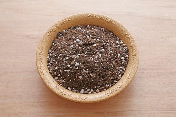 香草植物有機培養土