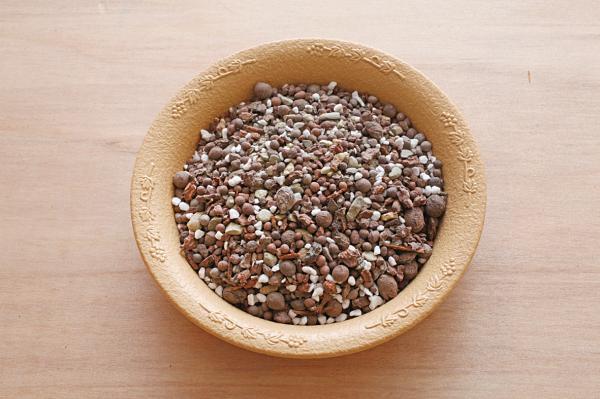 多肉植物專用栽培土