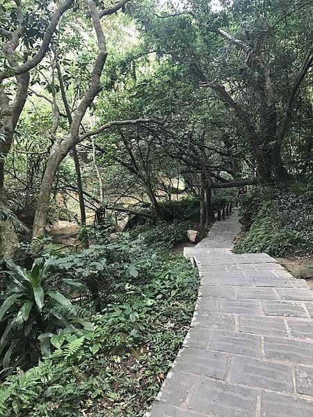大溝溪公園與圓覺瀑布10.jpg
