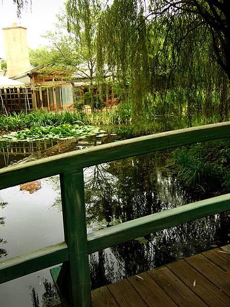 莫內橋(整個景緻就是重現「睡蓮」(Water Lilies)那幅畫作啊。)