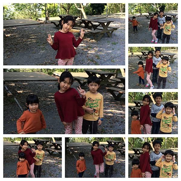 IMG_0221_Fotor_Collage.jpg