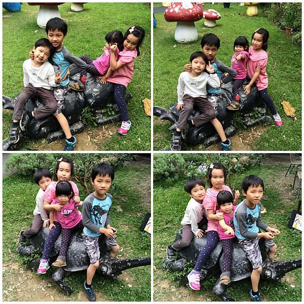 IMG_0284_Fotor_Collage.jpg