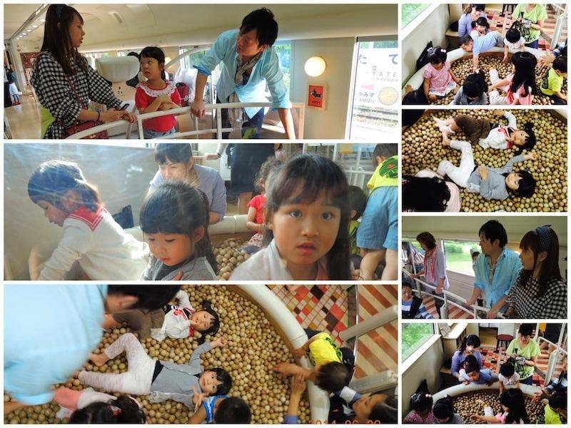 IMG_4334 4JPG_Fotor_Collage.jpg