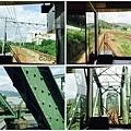 IMG_6925_Fotor_Collage.jpg