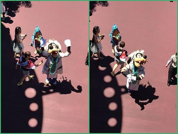 IMG_7504_Fotor_Collage.jpg