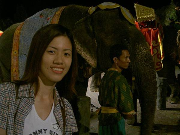 不坐大象也要跟大象合照