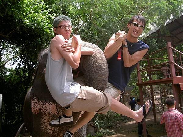 大象之雙人技