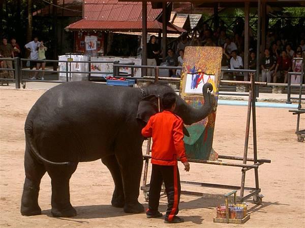 大象表演畫畫