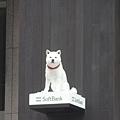 SOFTBANK代表的狗兒在牆上XD