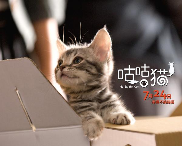 電影咕咕貓5