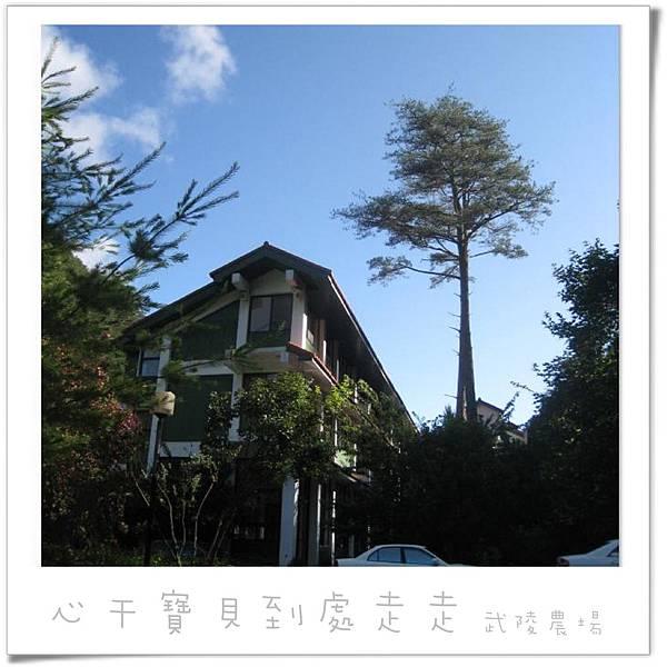 武陵之宿4.jpg