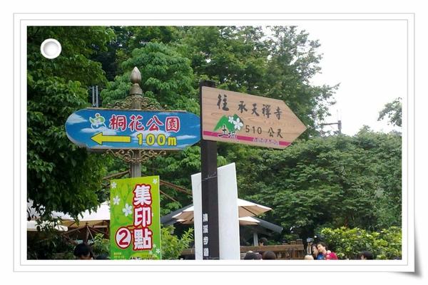 9904土城油桐花 (15)(001).jpg