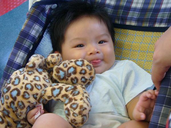小杰跟小豹