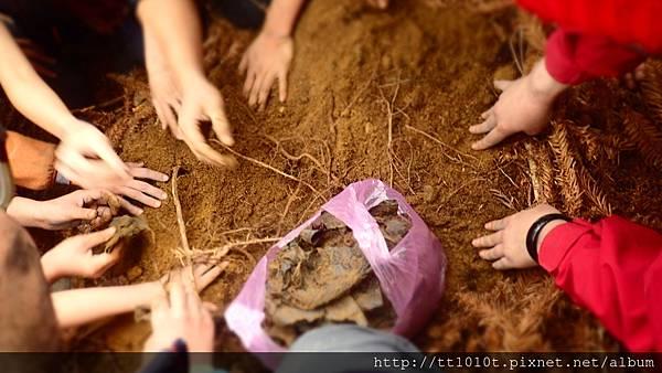 藏在土裡的陳年塑膠