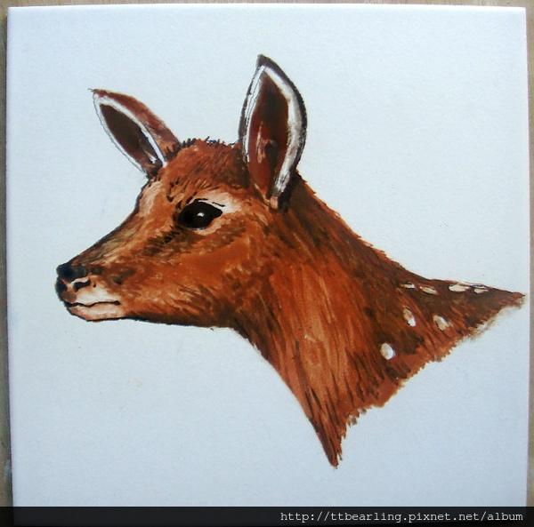 母鹿.JPG