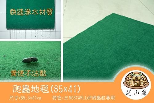 爬蟲地毯.jpg