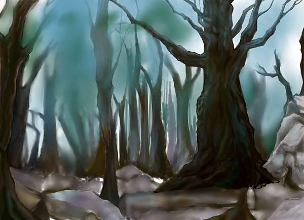 森林3.jpg