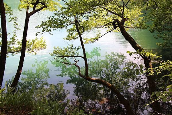 Croatia, Plitvice N. P.-120608-036-上湖區