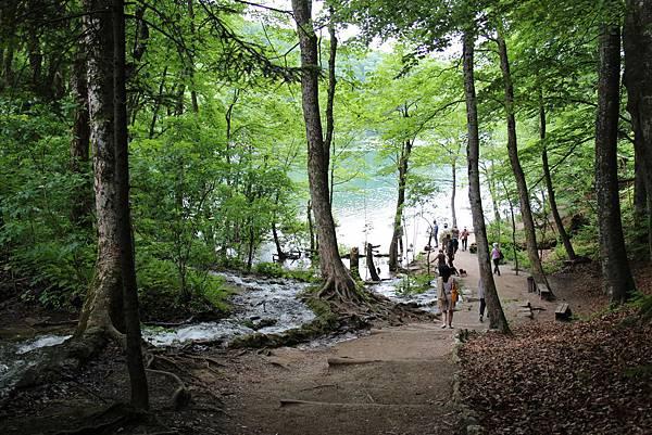 Croatia, Plitvice N. P.-120608-062-上湖區