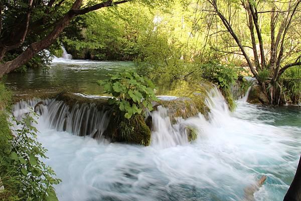 Croatia, Plitvice N. P.-120609-147-下湖區