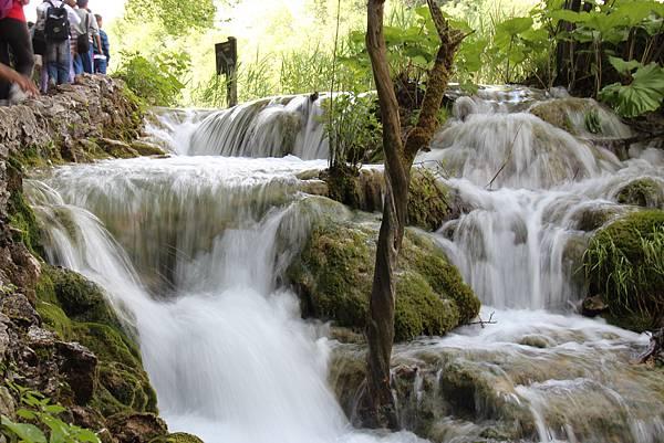 Croatia, Plitvice N. P.-120609-157-下湖區