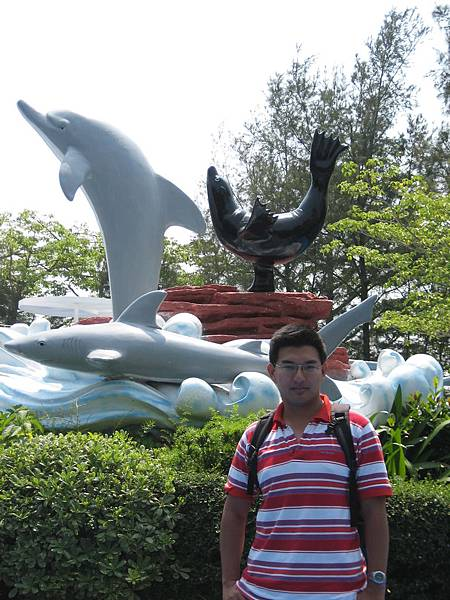 海豚 鯨魚 海獅