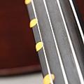 Cello-02.JPG
