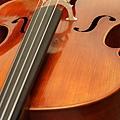 Cello-04.JPG