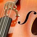 Cello-05.JPG